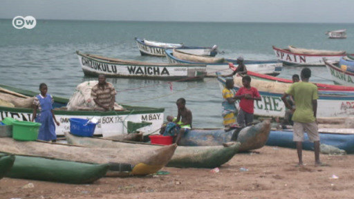 Pollution and overfishing are threatening Lake Malawi's biodiversity. Can locals undo the damage?
