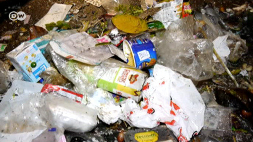 Plastic waste and the recycling myth | Environment| All topics from
