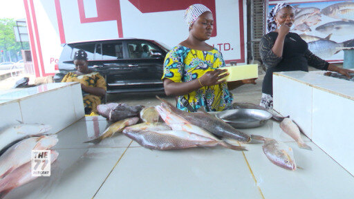 Dwindling fish stocks, climatic changes and human impact – what do you know about overfishing in West Africa?
