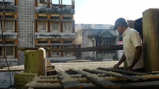 Meet the 'birdman' of Chennai