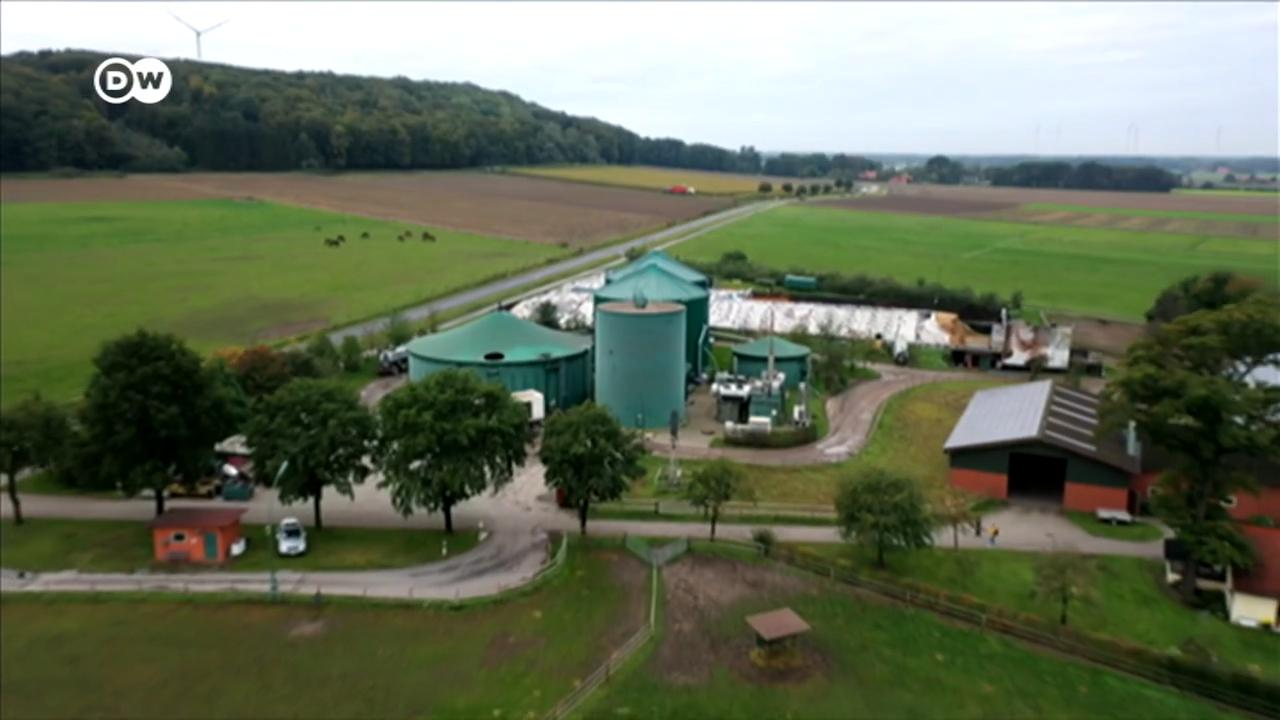 Germany's biogas plants face bankruptcy